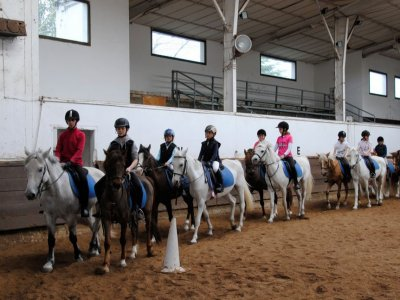 5-day Horse riding camp, Getxo, (10-20 hrs.)