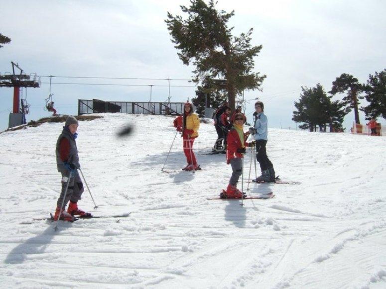 grupo nieve