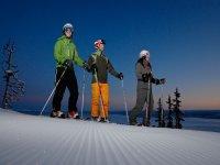 Clases grupales de Esquí para niños 2h en Astún