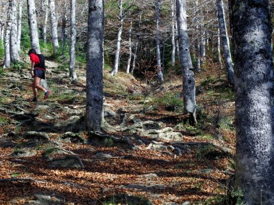 Trail Running en los Pirineos de 2 a 4 horas
