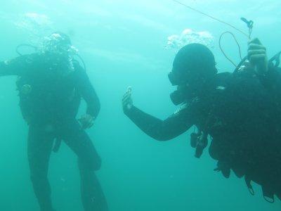 在庞特维德拉的开放水域潜水员。团体优惠