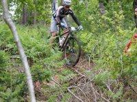享受骑山地自行车和朋友