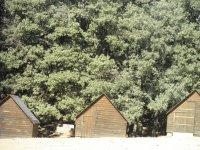 Campamento fin de curso en inglés en Navamorcuende