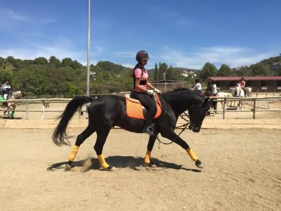1 hour initiation equestrian course in Sitges