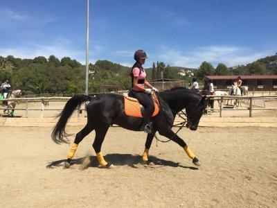 在锡切斯骑马课程1小时开始