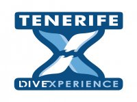 Tenerife Dive Experience Paseos en Barco