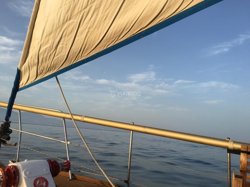 paseos-en-barco_de_conchi-camino_1463980439.1459.jpeg