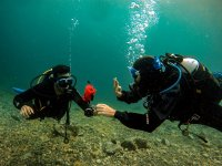 Buceo con Tenerife Dive Experience