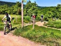 Grupo de ciclistas por la montaña