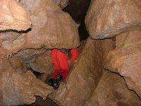 猫女中的洞穴
