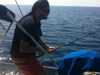 In the hogh seas