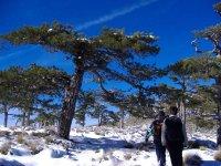 rutas de nieve