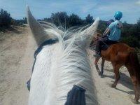 Ruta a caballo por El Berrueco