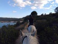 Rutas a caballo en el Norte de Madrid