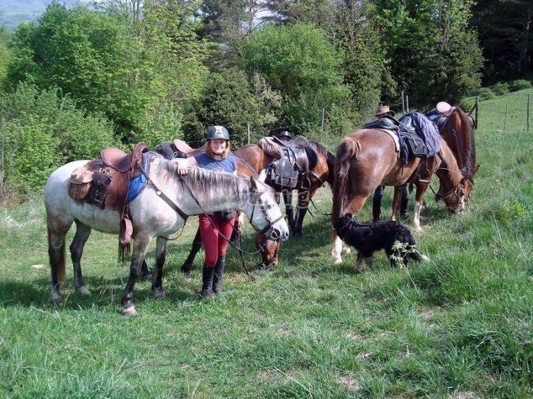 Con i cavalli e il cane