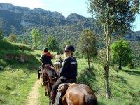 Equitazione Vall de Camprodón + classe precedente
