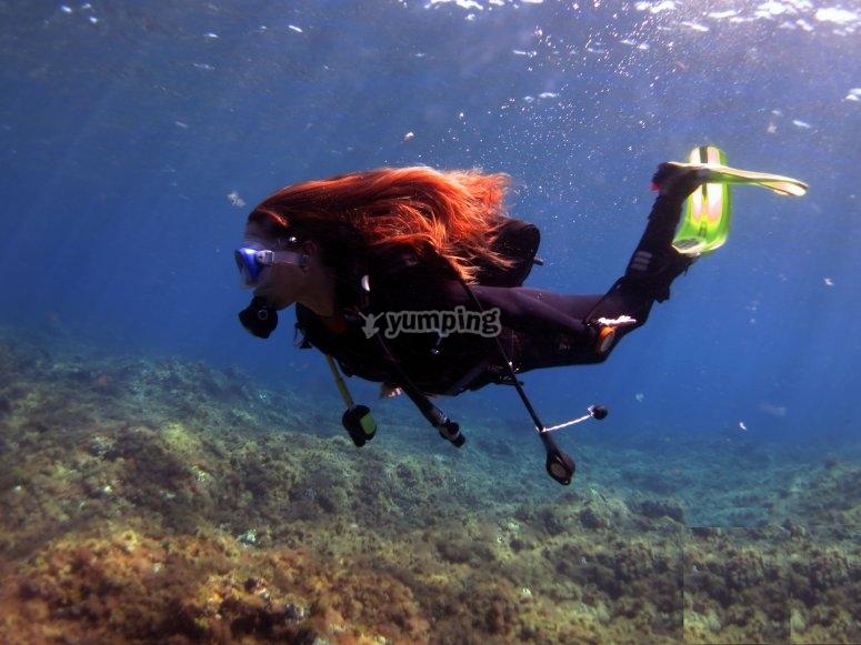 Experiencia de buceo en Risco Verde