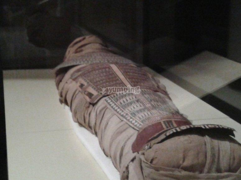 Momia en la sala de Egipto