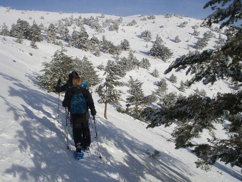 Passeggiando nella neve.