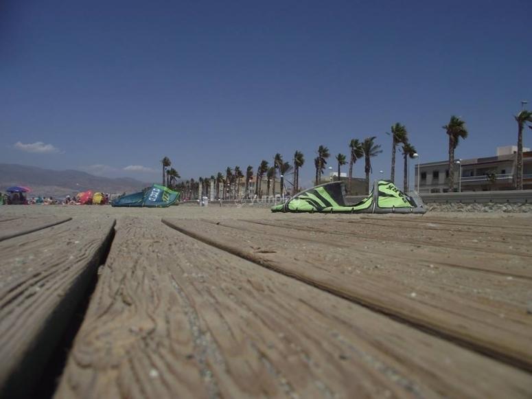 Aquiloni sulla spiaggia
