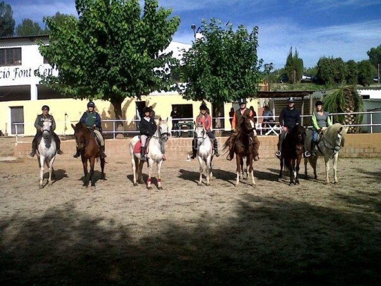 赛马上的马群