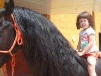 Paseando con el  caballo