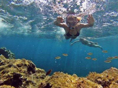 Snorkel trip North of Mallorca