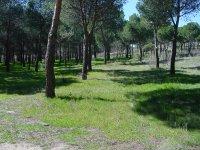 Sierra de Madrid para hacer gymkanas