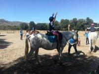 Actividad con caballos