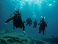 Grupo de buceadores en la inmersión