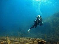 Rincones uúnicos en el fondo marino