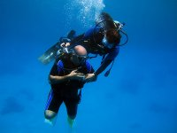 跳水跳水教训马德里