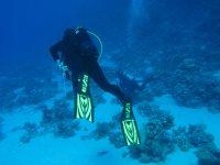 Iniziazione alle immersioni