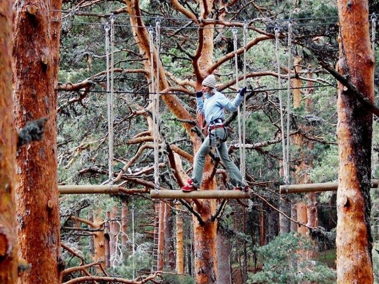 Having fun in the top-tree circuit on Winter