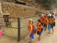 Campamento urbano de inglés Mallorca verano