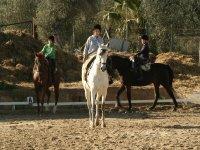 Ruta a caballo por el Preparque de Doñana 2 horas