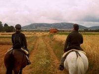 Despedidas de soltero con rutas a caballo