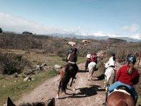 Excursión a caballo Ávila con aperitivo