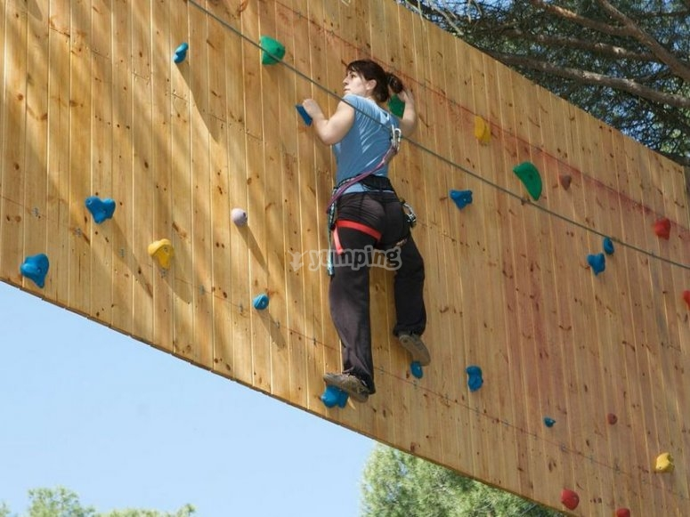 Climbing wall within the trees