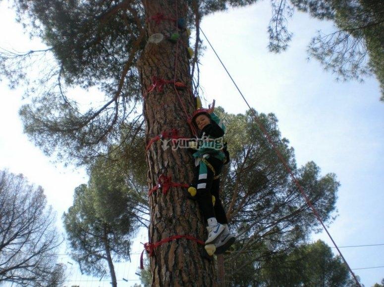 Little child climbing the tree