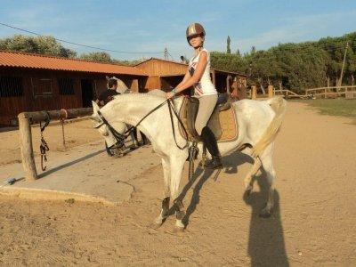 Centro Hípico Palamos Horses Campamentos Hípicos