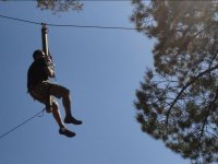 In the zipline, to the tree