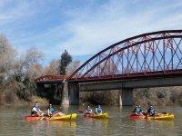 河独木舟乘坐夫妇的瓜达尔基维尔河