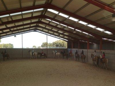Clases equitación Segovia cualquier nivel
