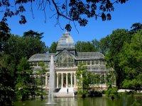 Buscar el tesoro en Parque del Retiro de Madrid 3h