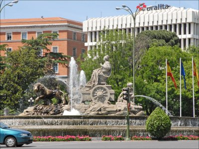 Ruta en limusina por Madrid con botellas de cava