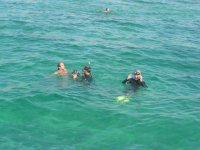小组做浮潜