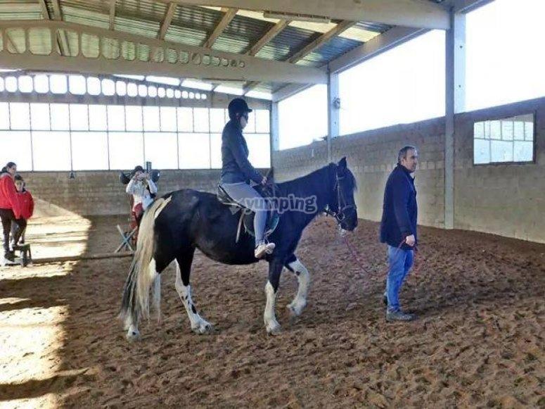 Dando clases de equitacion