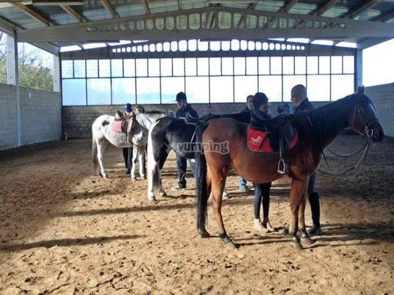 Practicando equitacion