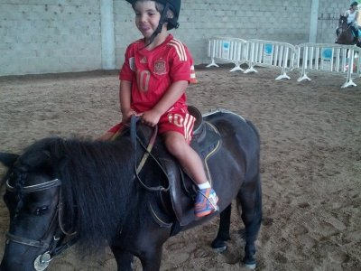 4 horse riding lessons with ponies, Palencia, 45 m